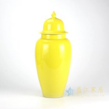 RZBF08-k 颜色釉抽罐子