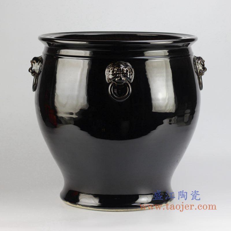 颜色釉黑色狮子头缸水缸
