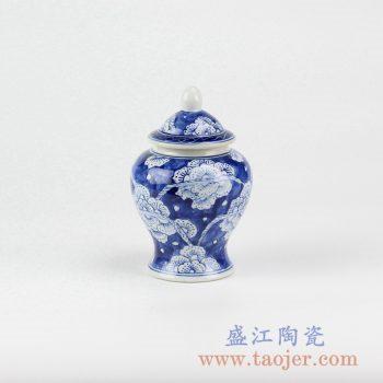 RZIQ02-B_青花花朵将军罐储物罐花瓶家居摆件品景德镇