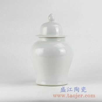 RYNQ221_全白将军罐花瓶花插陶瓷瓶景德镇艺术摆件品