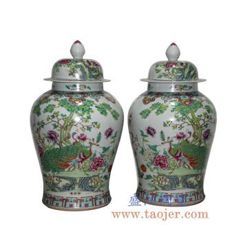 RYWQ10-B 手绘粉彩孔雀将军罐储物罐花瓶