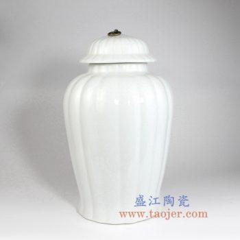 RYNQ243 全白将军罐储物罐花瓶花插带铜扣