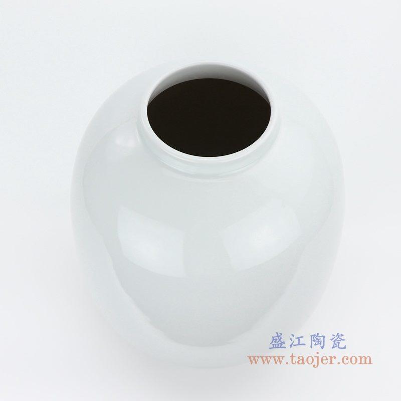 RZMS18 盛江陶瓷 小清晰花瓶摆件 客厅干花插花鲜花装饰品