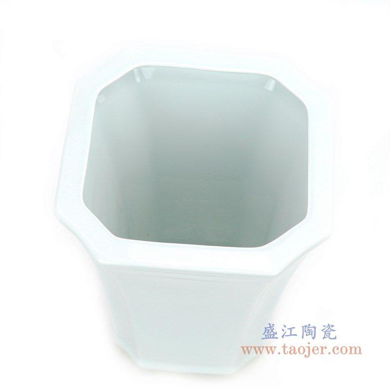 RZPS02 盛江陶瓷 懒人自动吸水花盆简约个性储水创意花盆绿萝吊兰植物客厅桌面盆器