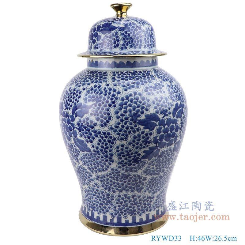 RYWD33 青花 手绘葡萄牡丹纹将军罐 正面图