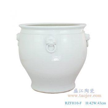 RZFH10-F 仿古 颜色釉狮子头带环纯白雕刻大缸