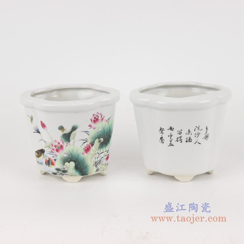RYXP41-A/C/B 复古风多款可选海棠异形小号花盆陶瓷花盆菖蒲盆多肉兰花仿古花盆
