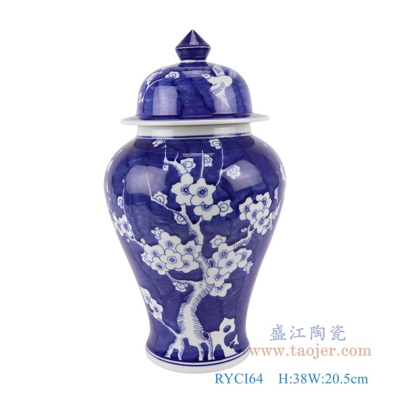 RYCI64青花冰梅将军罐正面